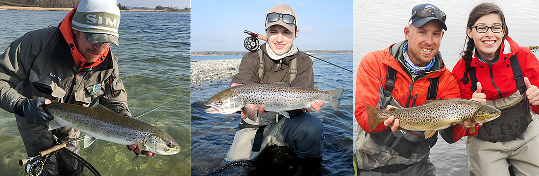seatrout fishing fyn lodge