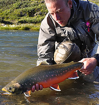 greenland fishing for arctic char with denmark fishing lodge and getaway tours